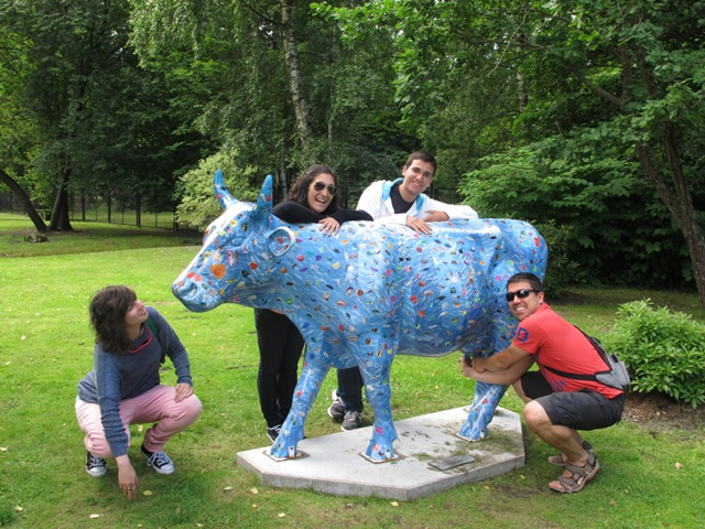 The Blue cow!!!!